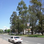 canberra-student-sightseeing-2